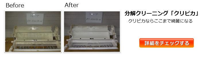 kuripika_banner